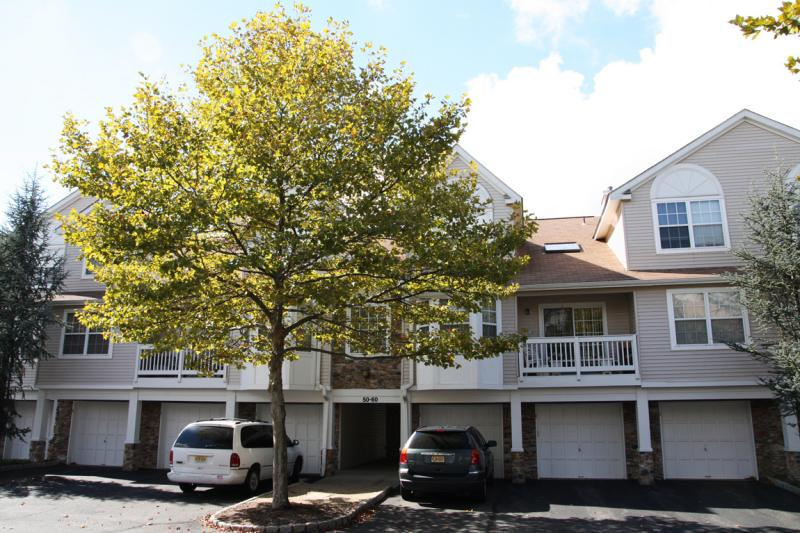 Roxbury Co-op Condo Townhouse