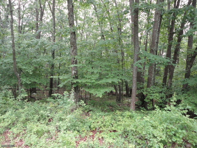 Additional photo for property listing at 214 Mattison Reservoir Avenue  Branchville, New Jersey 07826 États-Unis