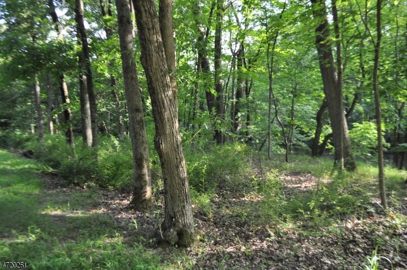 Terrain pour l Vente à 207 Zion Road Hillsborough, New Jersey 08844 États-Unis