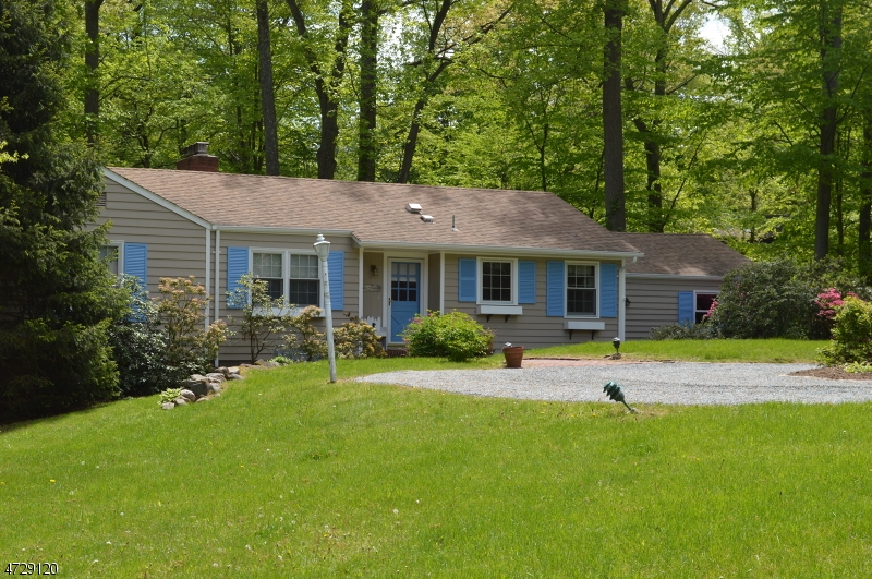 Частный односемейный дом для того Продажа на 31 Pine Drive Park Ridge, Нью-Джерси 07656 Соединенные Штаты