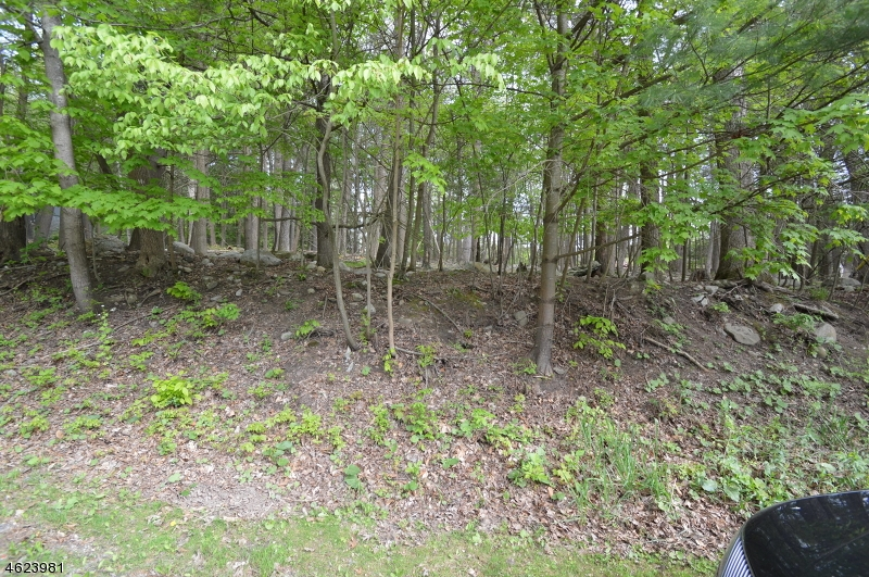 Land for Sale at 109 Hemlock Hl Montague, New Jersey 07827 United States