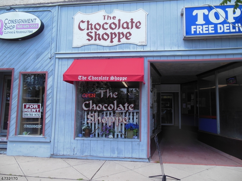 Commercial for Sale at 20 E WASHINGTON Avenue Washington, New Jersey 07882 United States