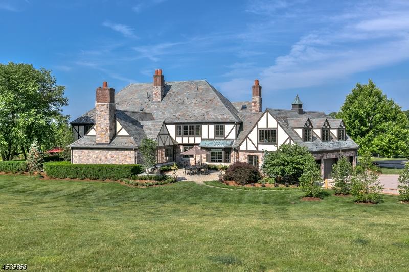 Частный односемейный дом для того Продажа на 10 MORGAN Drive New Vernon, 07976 Соединенные Штаты