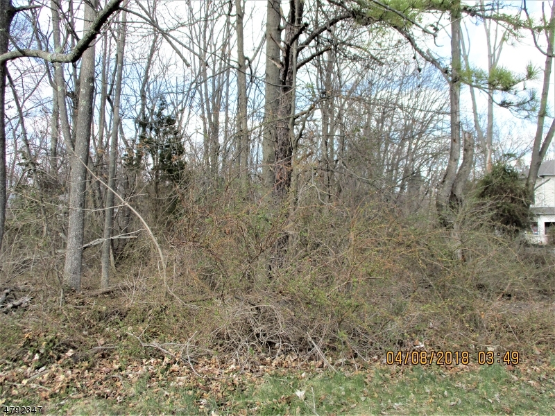 Land for Sale at Hillsborough, New Jersey 08821 United States