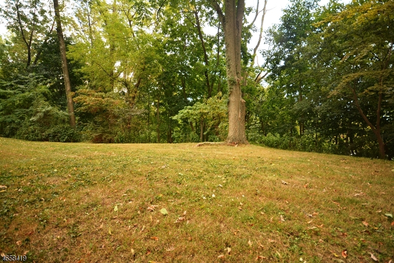 Additional photo for property listing at 96 Lacey Avenue  Gillette, New Jersey 07933 États-Unis