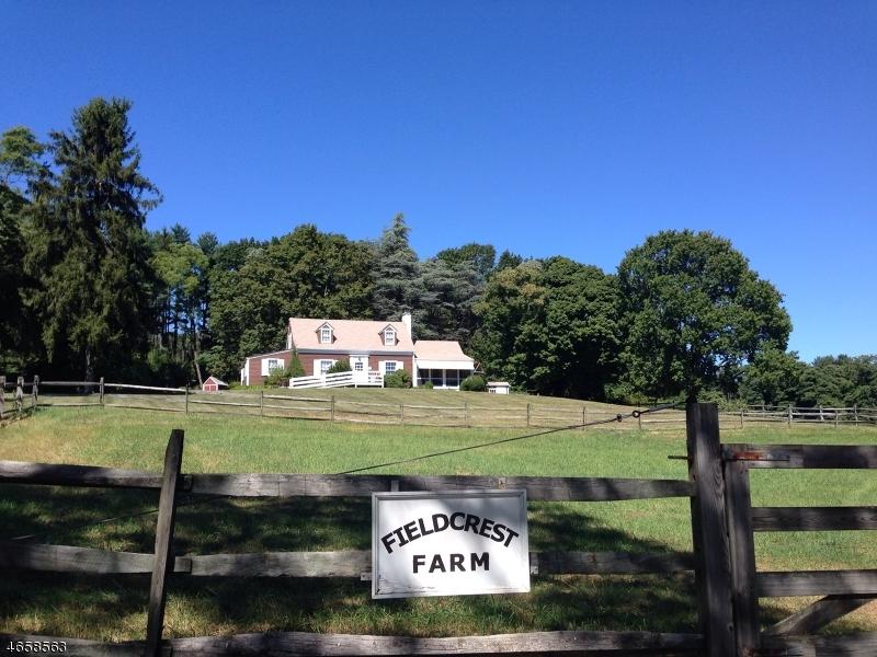 Casa Unifamiliar por un Alquiler en 100 Farmersville Road Califon, Nueva Jersey 07830 Estados Unidos