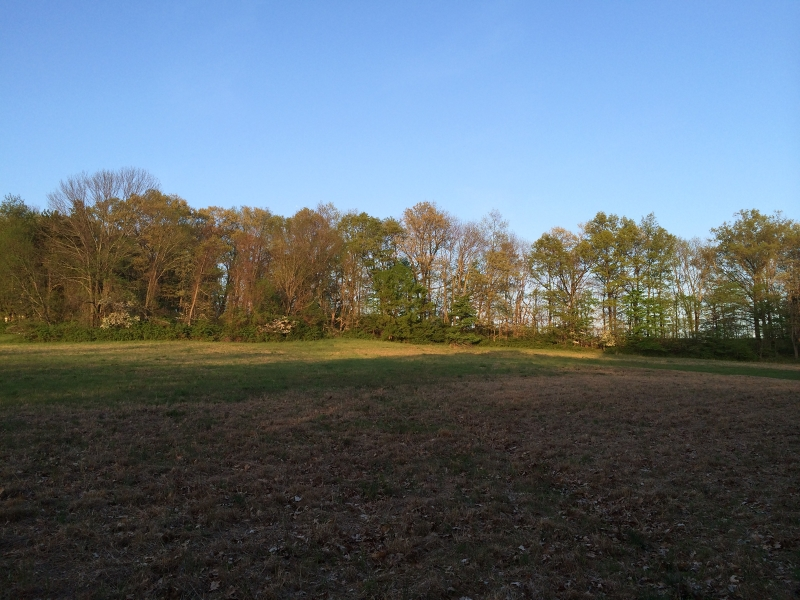 Land for Sale at Harding Township, New Jersey 07960 United States