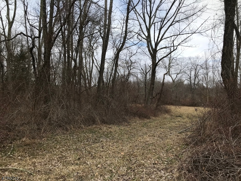 土地 為 出售 在 OLD FOUNDRY Road Stillwater, 新澤西州 07860 美國