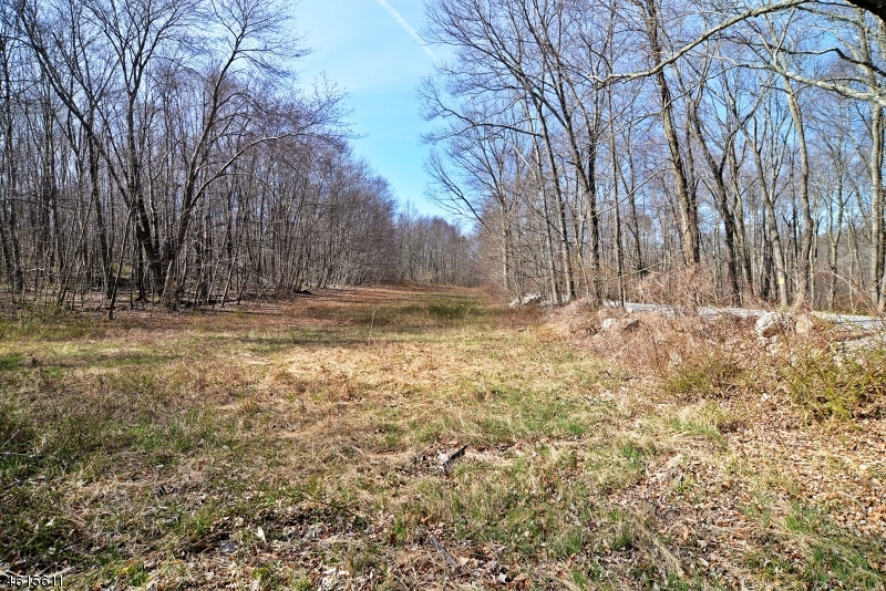 Additional photo for property listing at 36&41 Shannon Road  Blairstown, New Jersey 07825 États-Unis
