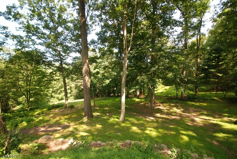 Additional photo for property listing at 175 Roundtop Road  Bernardsville, New Jersey 07924 États-Unis