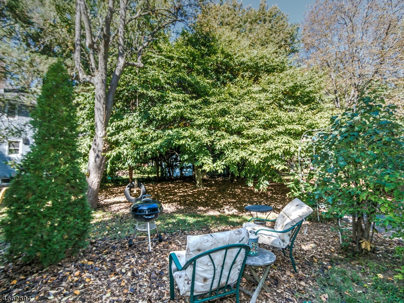 Additional photo for property listing at 447 Grant Avenue  Scotch Plains, New Jersey 07076 United States