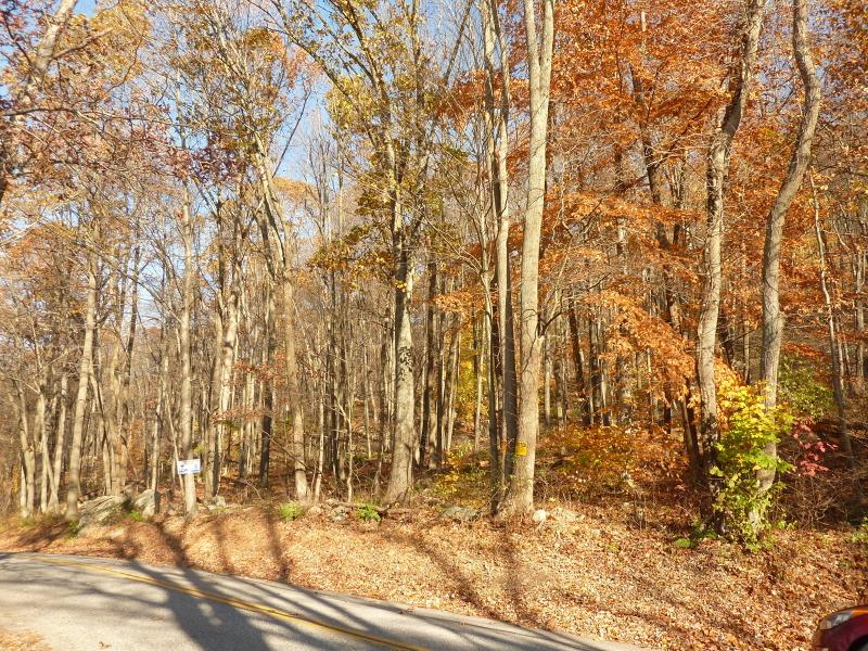 土地 为 销售 在 48 Tamarack Road Belvidere, 新泽西州 07823 美国