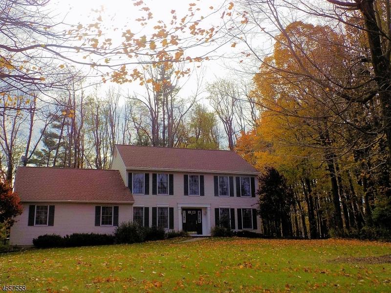 独户住宅 为 销售 在 8 HIGGINS DRIVE 弗农, 07462 美国