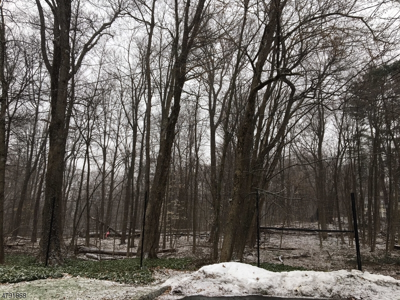 Land for Sale at xxx Loantaka Terrace Madison, New Jersey 07940 United States