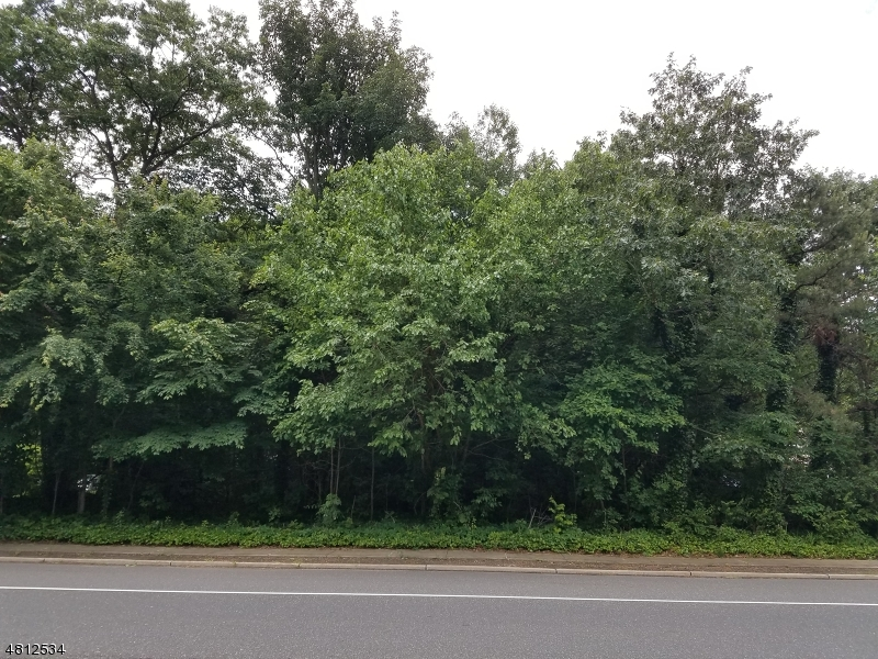 Land for Sale at 83C HWY 516 Old Bridge, New Jersey 08857 United States