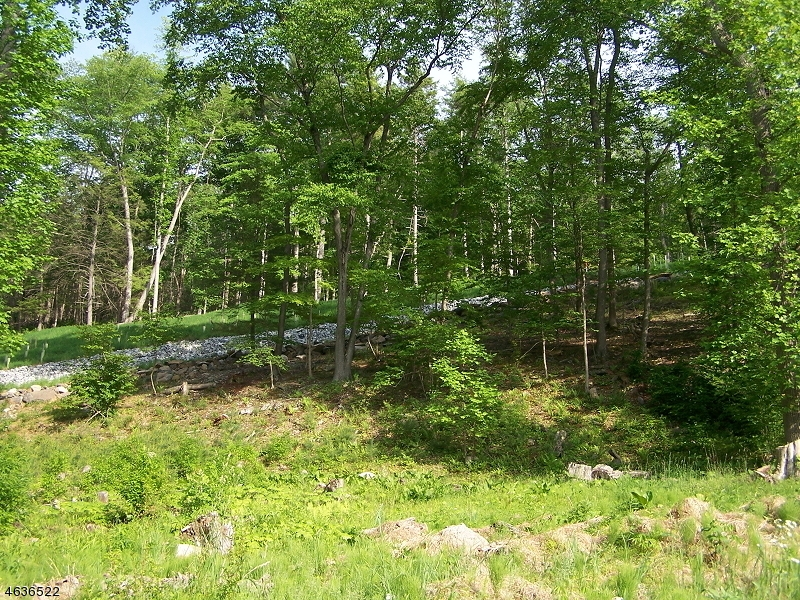 Additional photo for property listing at 195-A River Road  Montague, Nueva Jersey 07827 Estados Unidos