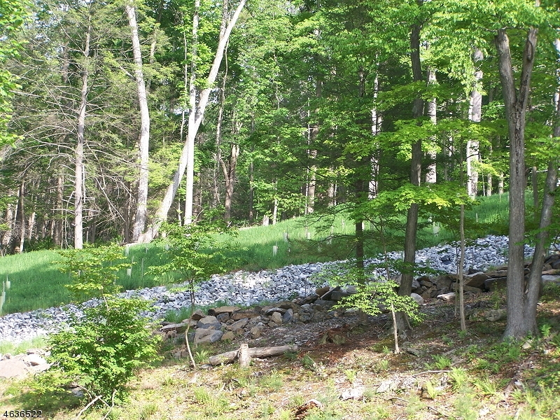 Additional photo for property listing at 195-A River Road  Montague, New Jersey 07827 États-Unis