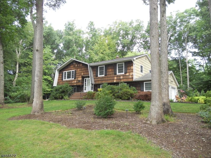 Частный односемейный дом для того Продажа на 10 Grover Street Succasunna, 07876 Соединенные Штаты