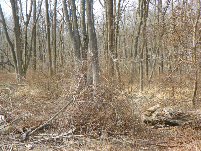 Additional photo for property listing at 166 Rock Rd W  Lambertville, New Jersey 08530 États-Unis