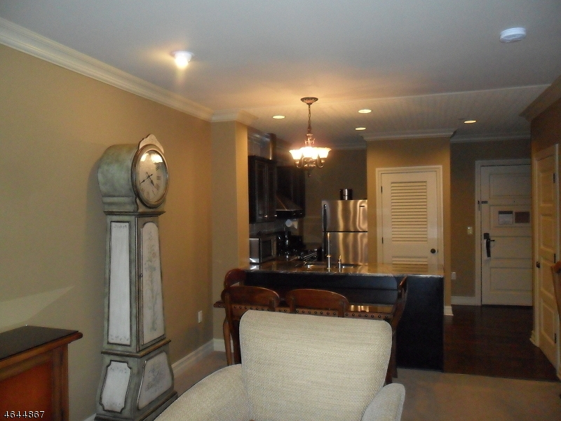 Additional photo for property listing at 3 WILD TURKEY WAY 2228  Hamburg, New Jersey 07419 États-Unis