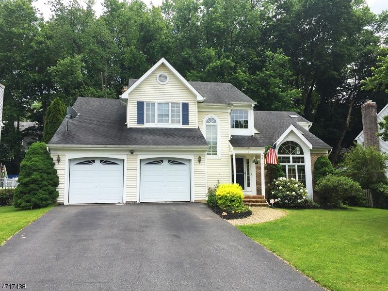 独户住宅 为 销售 在 6 FAWN RUN 布鲁姆斯伯里, 新泽西州 08804 美国