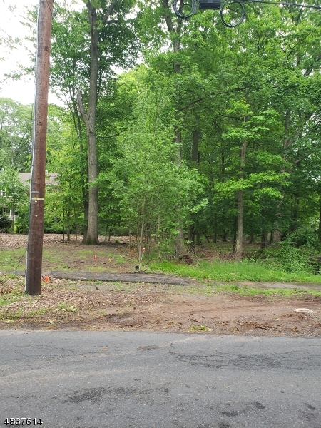 Land / Lots for Sale at 1234&1238 COOPER ROAD 1234&1238 COOPER ROAD Scotch Plains, New Jersey 07076 United States
