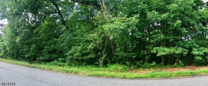 Земля для того Продажа на 9 MOOSEPAC Lane Jefferson Township, Нью-Джерси 07438 Соединенные Штаты