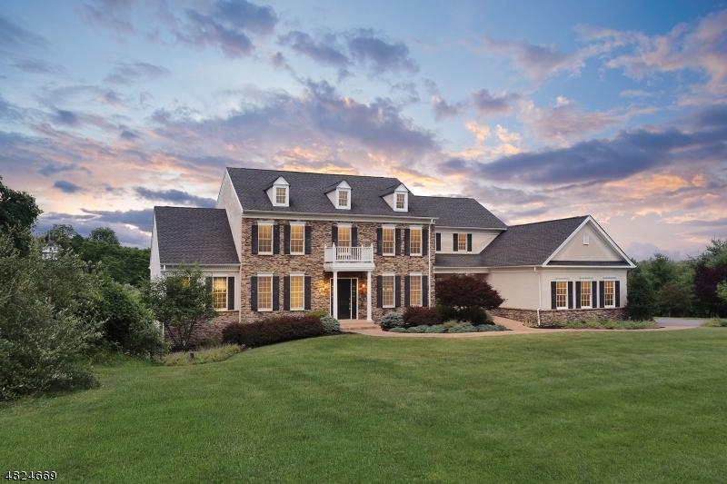 独户住宅 为 销售 在 61 PERRYVILLE Road Union, 新泽西州 08867 美国