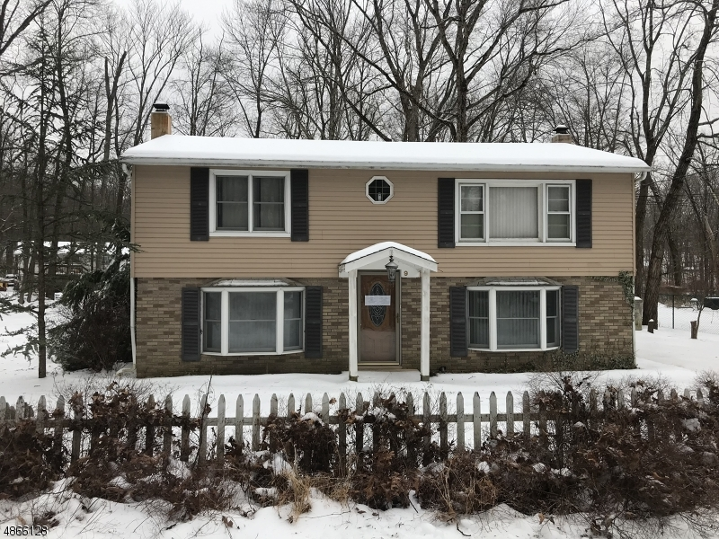 Single Family Home for Sale at 9 LONE PINE TRL 9 LONE PINE TRL Hampton Township, New Jersey 07860 United States