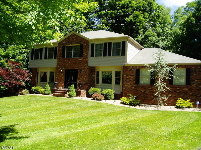 Maison unifamiliale pour l Vente à 91 Pleasant Hill Road Randolph, New Jersey 07869 États-Unis