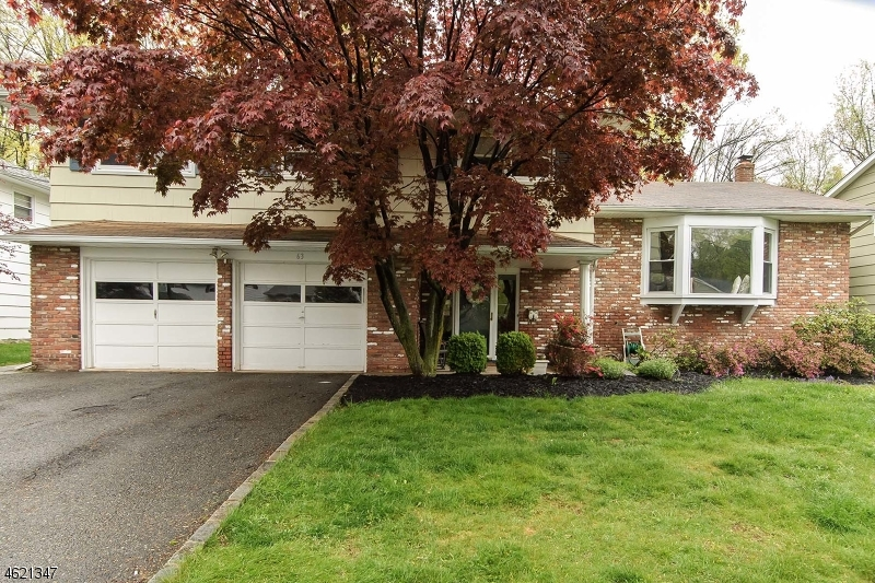 Частный односемейный дом для того Продажа на 63 Monroe Avenue Roseland, Нью-Джерси 07068 Соединенные Штаты