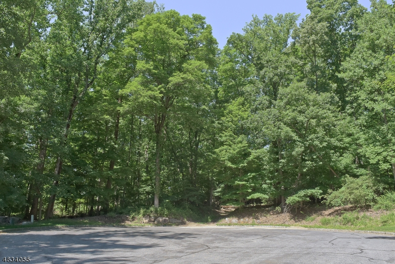 Additional photo for property listing at 5 Buddy Ln, Q112  Brookside, New Jersey 07926 États-Unis