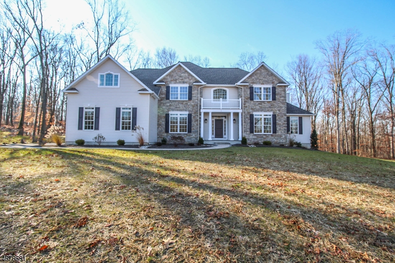 Single Family Home for Sale at 11 Quaker Ridge Court Pittstown, New Jersey 08867 United States