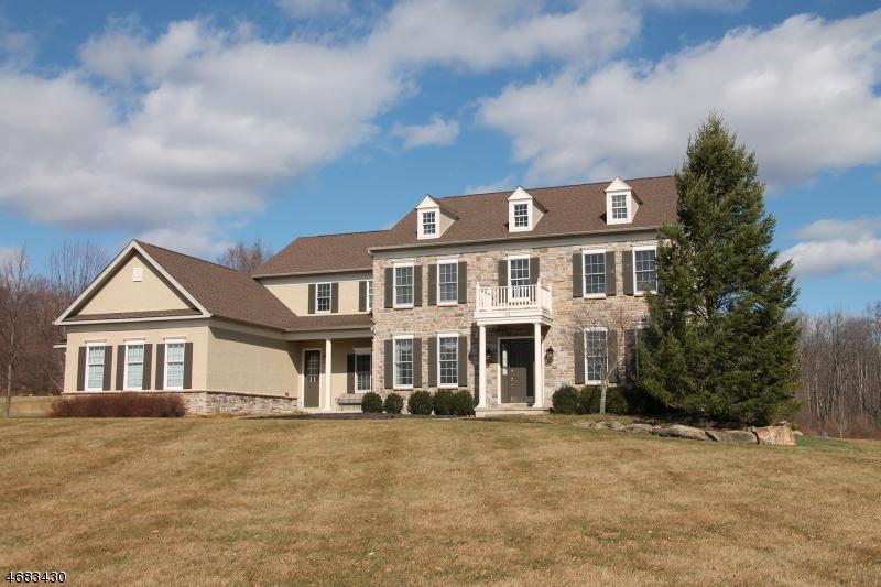 Частный односемейный дом для того Продажа на 14 PERRY Road Clinton, 08801 Соединенные Штаты
