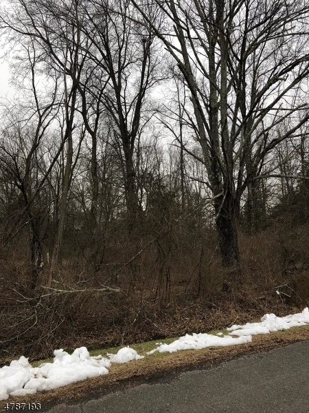 Land for Sale at LUDLOW Avenue Montgomery, New Jersey 08502 United States