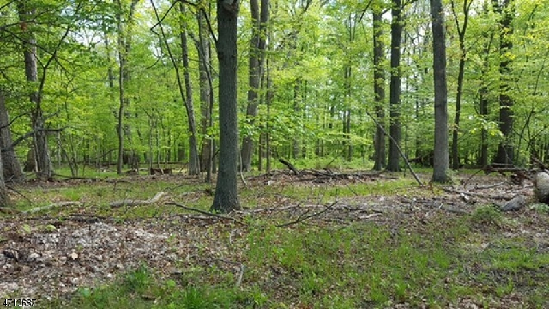 Land for Sale at 20 Spring Hollow Road Far Hills, New Jersey 07931 United States
