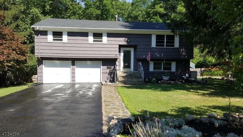 Частный односемейный дом для того Продажа на 45 Richard Dr E Mount Arlington, Нью-Джерси 07856 Соединенные Штаты