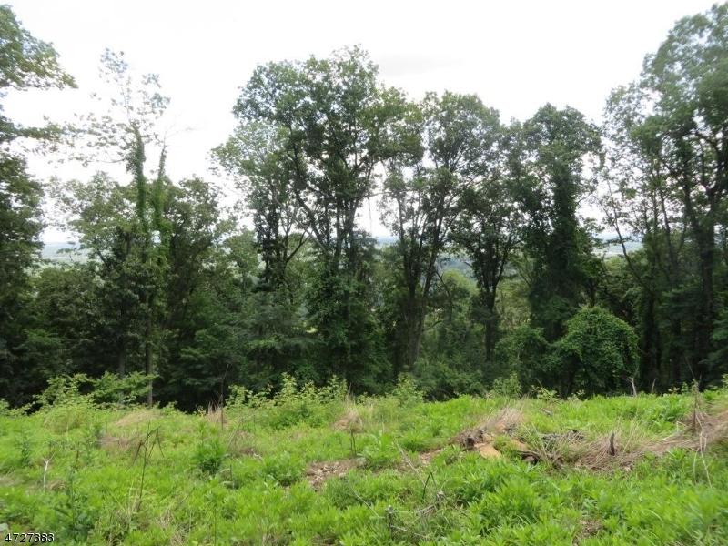Terrain pour l Vente à 78 HILLCREST Road Bridgewater, New Jersey 08836 États-Unis