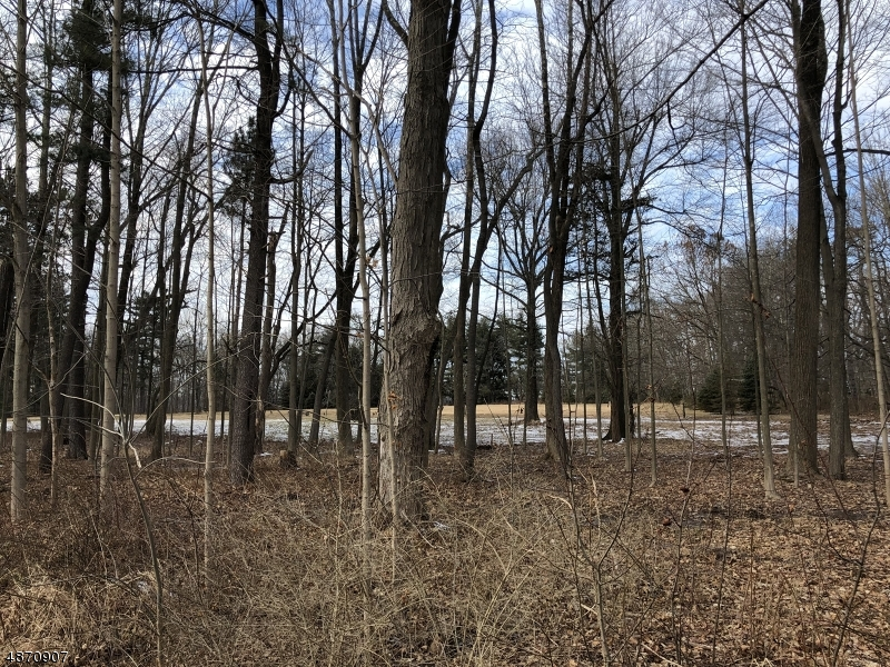 Additional photo for property listing at 65 Village Rd Harding Township, New Jersey 07976 United States