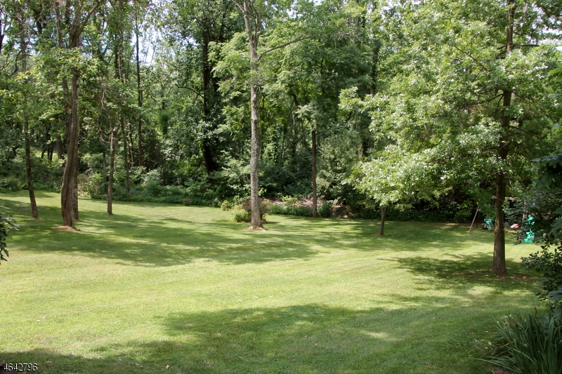 Additional photo for property listing at 100 BUCKHORN Drive  Washington, Nueva Jersey 07882 Estados Unidos