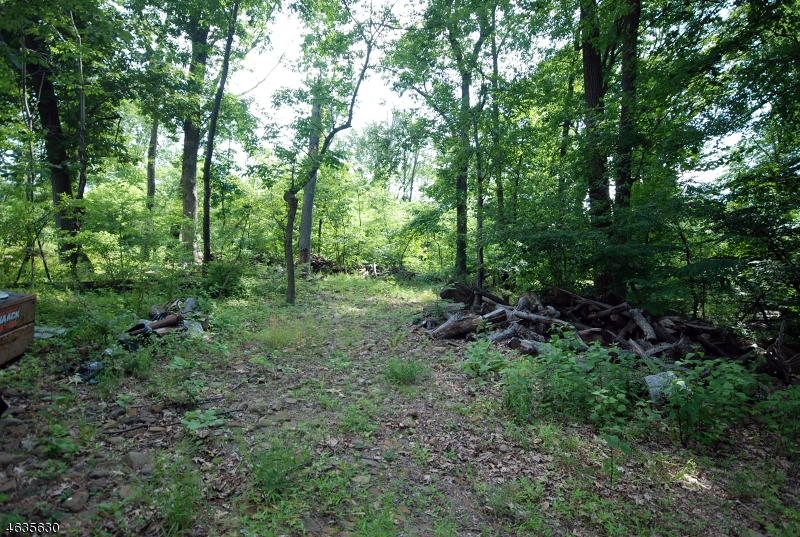 Additional photo for property listing at 81 Mount Bethel Road  Warren, Nueva Jersey 07059 Estados Unidos