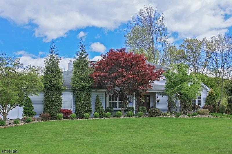 独户住宅 为 销售 在 41 Autumn Drive Mine Hill, 07803 美国