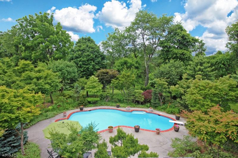 独户住宅 为 销售 在 5 CHARLES Court 克林顿, 新泽西州 08801 美国