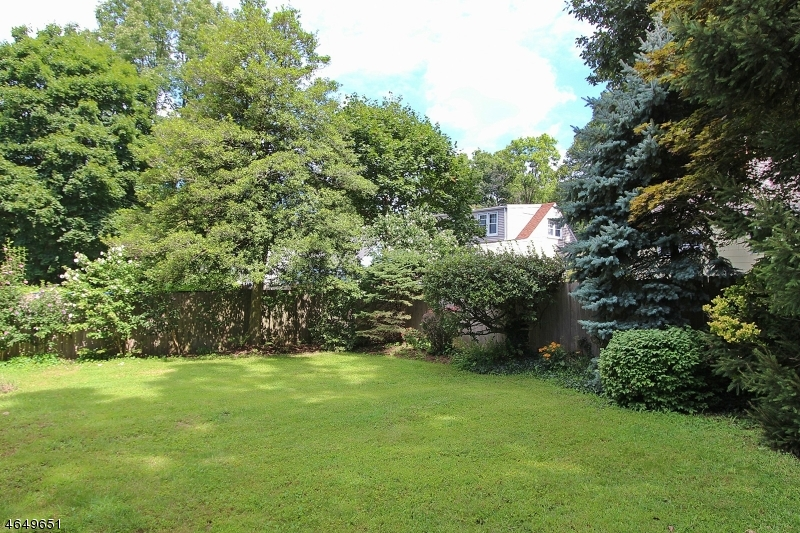 Additional photo for property listing at 529 Warren Street  Scotch Plains, 新泽西州 07076 美国