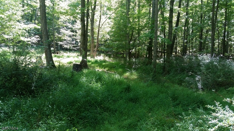 Additional photo for property listing at 29E STEENYKILL Road  Montague, New Jersey 07827 États-Unis
