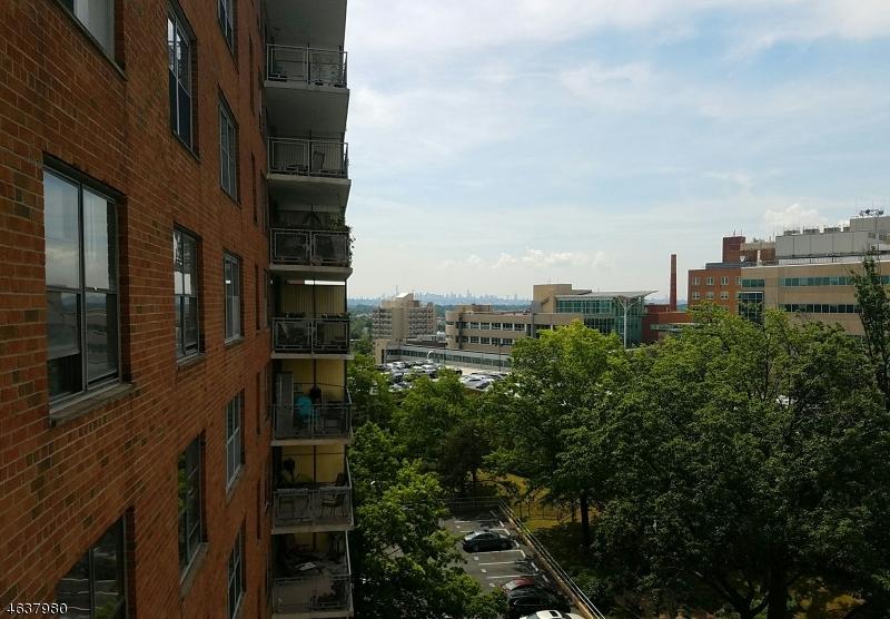 Additional photo for property listing at 301 Beech Street  Hackensack, Нью-Джерси 07601 Соединенные Штаты