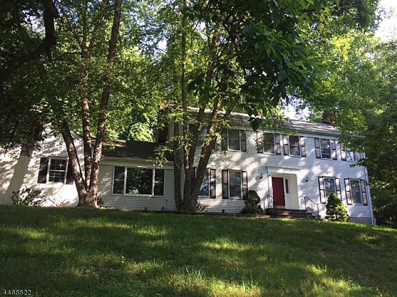 一戸建て のために 売買 アット 11 South Road Chester, ニュージャージー 07930 アメリカ合衆国