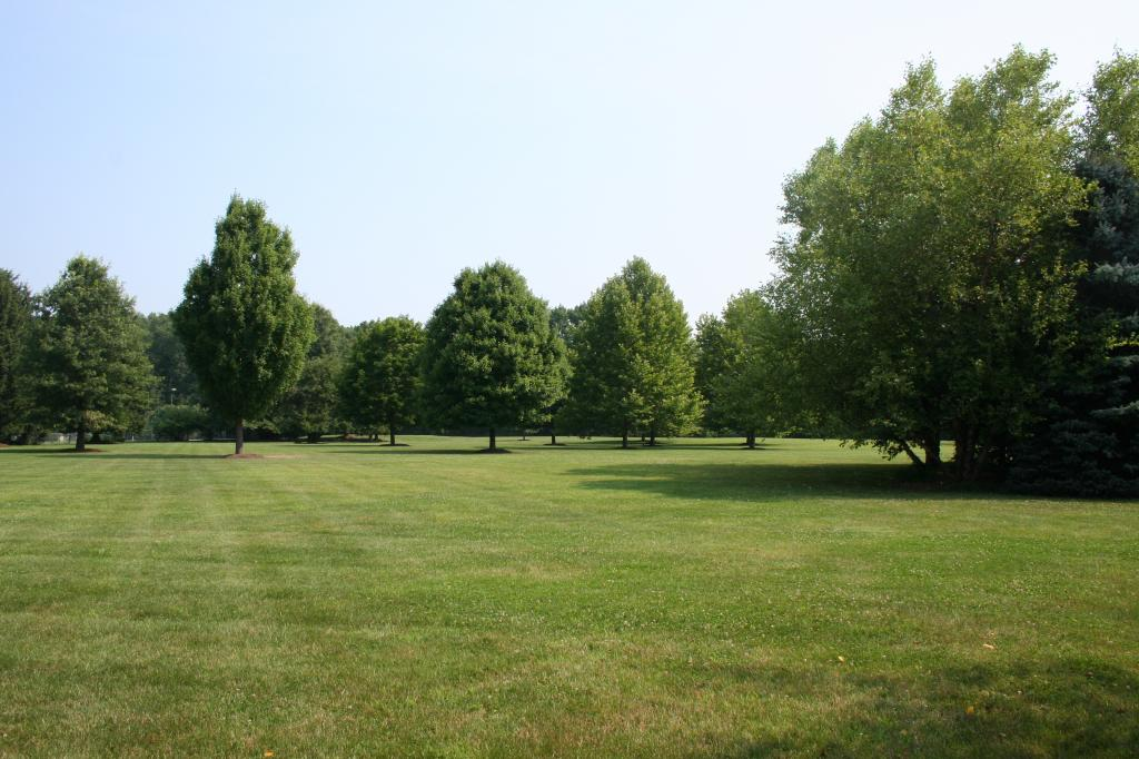 Land for Sale at 12 Sheepfield Farms Drive New Vernon, New Jersey 07976 United States