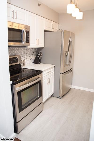 Casa Unifamiliar por un Alquiler en 300 Main St, UNIT 204 Little Falls, Nueva Jersey 07424 Estados Unidos