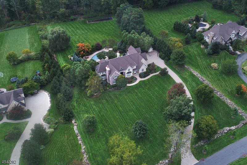Maison unifamiliale pour l Vente à 5 HALSEY FARM Road Tewksbury Township, New Jersey 08833 États-Unis